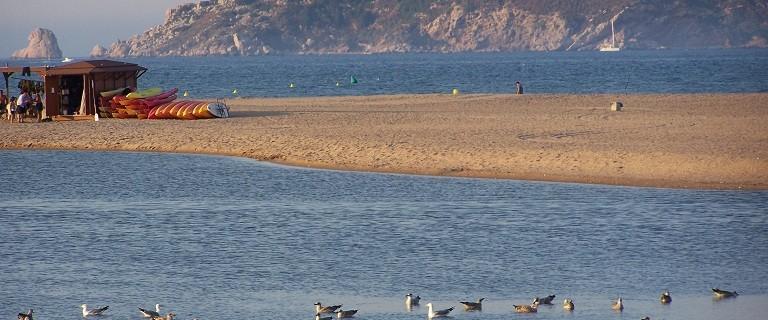 Parc natural Illes Medes, massís del Montgrí i Baix Ter